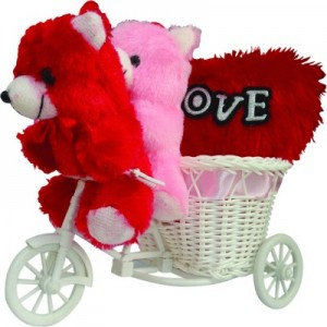 2-small-teddy-with-a-cycle-and-a-red-heart-cushion-tiedribbons-400x400-imae4ayaunz7gj5y
