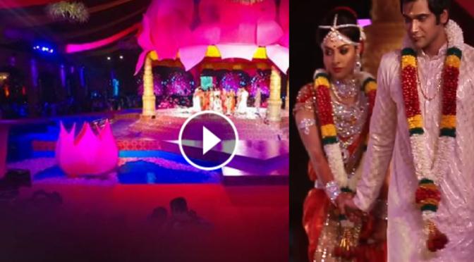 55 Crore Wedding! Costliest wedding! Wedding Video