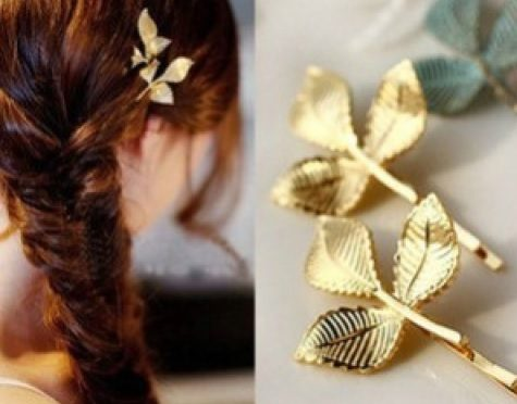 Beautiful Hair clips ( buy online)