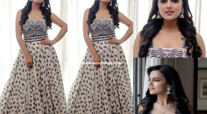 Shraddha Srinath in a long skirt and crop top