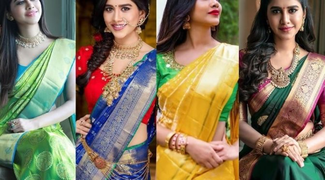 Nabha Natesh Traditional Silk saree's look!