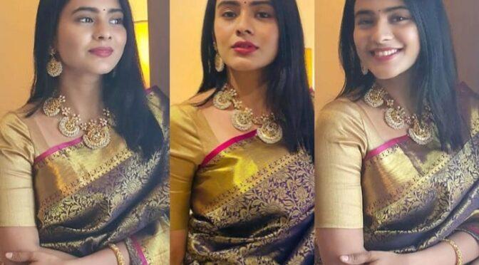 Hebah Patel in a Kanjeevaram saree!